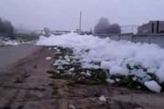 Shower Gel in Tula